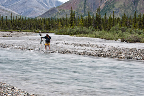 Matthew recording on the Yukon's upper Wind River.